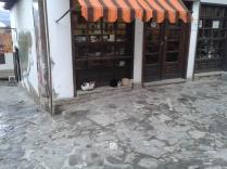 Veliko Tarnovo, Bulgary – Trio