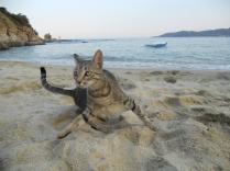 Elastiki – on a Sarti beach